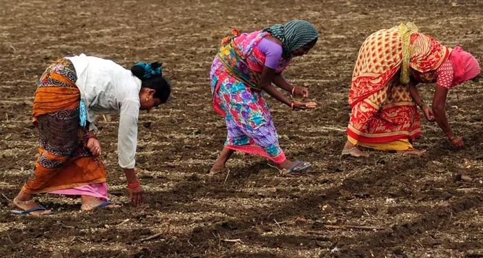 आम बजट में किसान कर रहा ठगा सा महशूस, हुज़ूर बताओ क्या दिया ? देश का किसान क्या दुश्मन ?